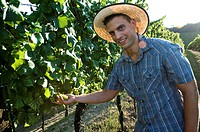 Young man in casual dress in vineyard holding white grapes