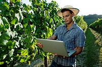 Young man in vineyard holding laptop