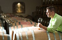 Young man in wine cellar with glass of red wine (thumbnail)