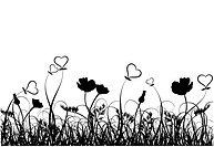 Grass, poppy and heart, vector