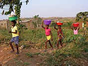 A group of girls carry food, water and other supplies on their heads  Feeding centres and other humanitarian aid were organised in Angola after widesc...