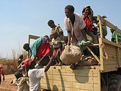 Malnourished children are carried off the truck bringing them to the MSF feeding centre  Feeding centres and other humanitarian aid were organised in ...