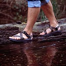 Man Wearing Sandals And Hiking In Rain Soaked Forest
