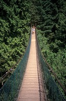 Capilanio suspension bridge, North Van, British Columbia, Canada