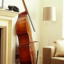 Close_up of a cello resting beside a fireplace in a living room