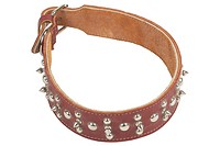 Brown leather dog collar uid 1197028