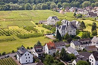 Europe, Germany, Rhineland, area of Bonn, Ahrweiler, vineyards, trail of the wine