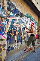 graffiti painter in Vienna