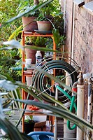 Close up view of tap and hosepipe with rack of pot plants and gardening tools