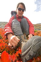 A woman ties her shoelaces in a patch of scrub birch, in the alpine of the Niut Range, British Columbia