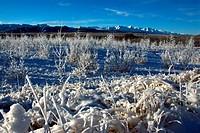 Kluane Mountains, Yukon Territory, Canada.