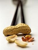 Peanut Arachis hypogaea