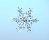 Snowflake with a stellar or dendritic crystal form, made in a cloud when water freezes at negative fifteen degrees Celsius. When crystallization occur...