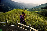 A man photographing the landscapes of rice lands. Long Li, China