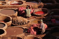 Workers at the Chouwara Tannery, Fez, Morocco, North Africa