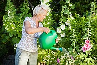 mature woman watering plants in garden.