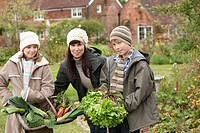 Family picking vegetables in garden