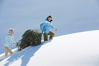 Italy, South Tyrol, Seiseralm, Couple carrying Christmas tree in snow