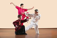 Kung Fu, Changquan, Xiebu chongquan, Chabu hengquan, Tixi tiaozhang, Long Fist Style, Persons practicing martial arts