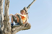 Spain, Mallorca, Boy 8_9 sitting in tree