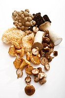 Assorted mushrooms, elevated view