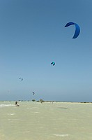 Egypt, The Red Sea, Kiteboarder