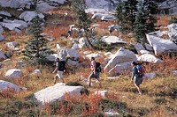 Hiking With A Group Through The Rocky Wilderness