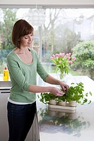 Woman taking herbs from plant (thumbnail)