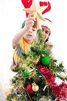 Father and son putting a star on the top of a Christmas tree at home