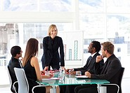 Mature businesswoman smiling at her colleagues in a meeting