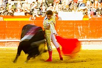 Corrida de Toros en la Plaza de Toros de Valencia durante las Fallas Valencia, Espa&#241;a