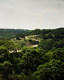 A curvy dirt road in the Hill Country. Texas. USA
