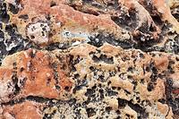 mediterranean coastal limestone aged