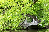 Bridge in Nymphenburg Palace Park, Munich, Bavaria, Germany