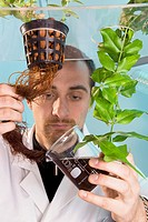 Plant milking technology. Researcher extracting active compounds from a plant´s roots in a Plant Advanced Technologies PAT research laboratory. PAT ha...