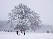 England, Essex, Havering atte Bower, People walking and sledging in Bedfords Park in Havering atte Bower.