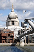 England, London, Millennium Bridge, Seagull above St Paul´s Cathedral and the Millennium Bridge.