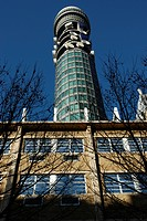 England, London, Bloomsbury, The British Telecom Tower rising above nearby building and trees in London.