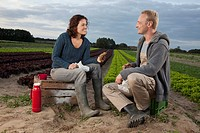 A man and a woman having lunch together by a lettuce field