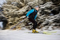 Woman Nordic skiing on the Baycrest Ski Trails in winter near Homer, Kenai Peninsula, Southcentral Alaska