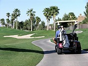 Golfer sitting in golf cart on course with palm trees in background