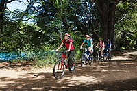Four people cycling through forest
