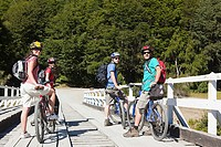 Four mountain bikers