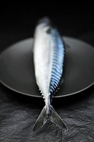 Whole mackerel on black plate
