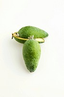 Feijoa on a White Background