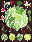 An illustration about lettuce and salad