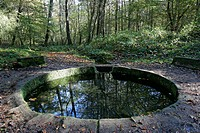 FOUNTAIN OF VILJOT, FOREST OF TRONCAIS, ALLIER 03, FRANCE