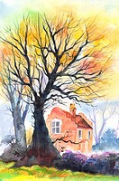 Flower, Watercolor painting of tall trees and a house