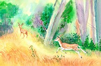 Animal, Watercolor painting of two deer running in the woods