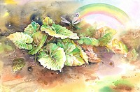 Insects, Watercolor painting of a dragonfly in nature